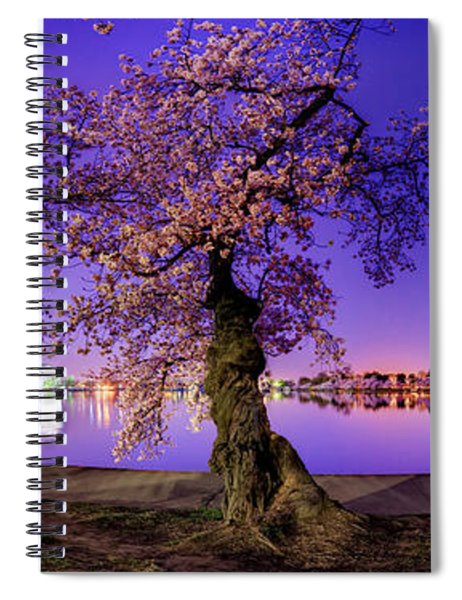 Night Blossoms 2014 Spiral Notebook