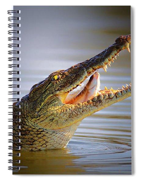 Nile Crocodile Swollowing Fish Spiral Notebook