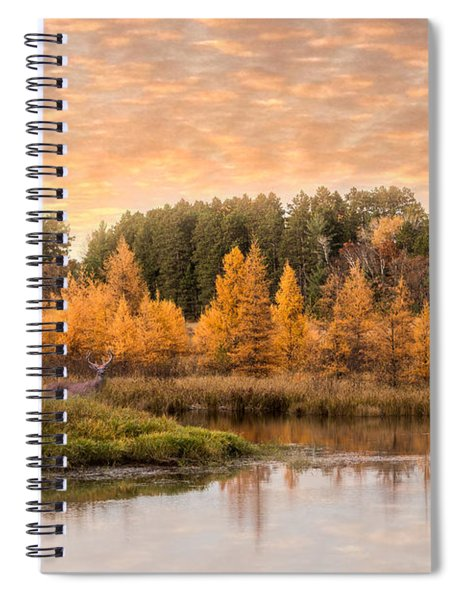 Spiral Notebook featuring the photograph Tamarack Buck by Patti Deters