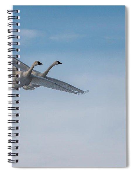 Trumpeter Swan Tandem Flight I Spiral Notebook