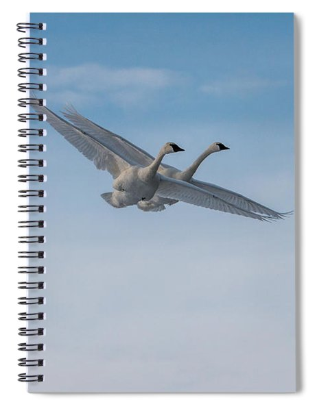 Spiral Notebook featuring the photograph Trumpeter Swan Tandem Flight I by Patti Deters