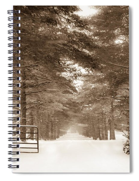 No Trespassing - Sepia Spiral Notebook