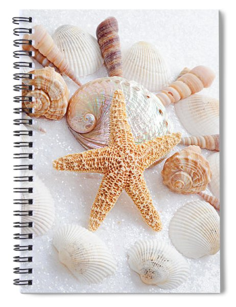 North Carolina Sea Shells Spiral Notebook