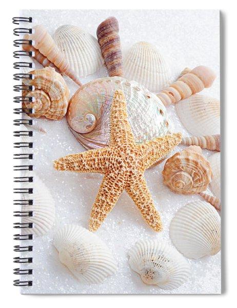 North Carolina Sea Shells Spiral Notebook
