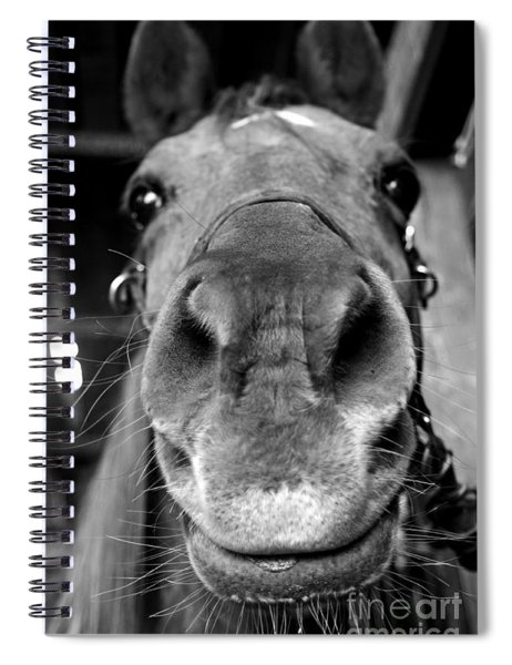 Nosy Bw Spiral Notebook