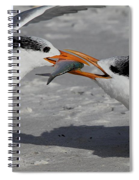 Nothing Says I Love You Like A Fish Spiral Notebook