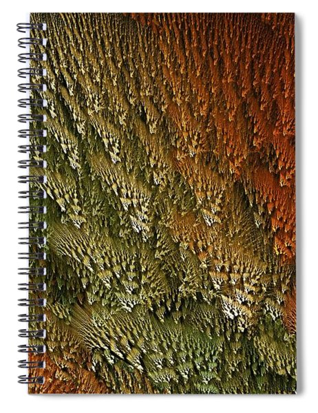 Nydntwar Frostlands Spiral Notebook