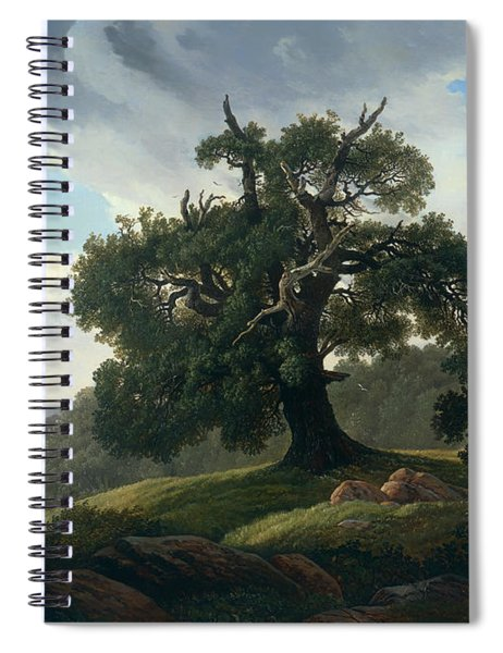 Oak Trees By The Sea Spiral Notebook