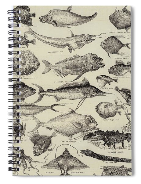 Odd Fish At The International Fisheries Exhibition Spiral Notebook