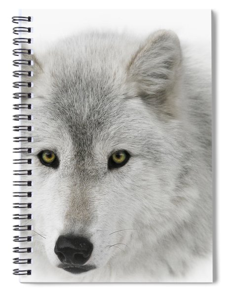 Oh Those Eyes Spiral Notebook