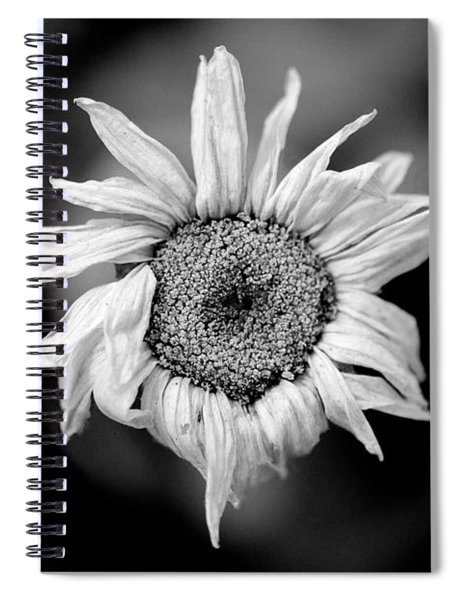 Old Beauty Spiral Notebook