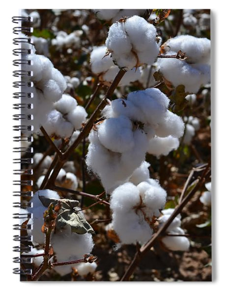 Old Cotton Fields Back Home Spiral Notebook
