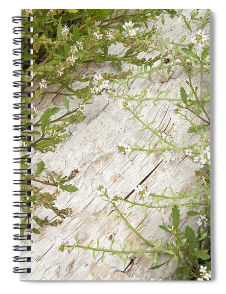 Olympic Flowers Spiral Notebook