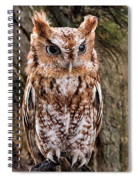 On Alert Spiral Notebook