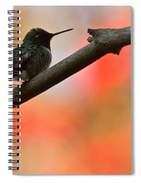 Spiral Notebook featuring the photograph On Guard by Robert L Jackson