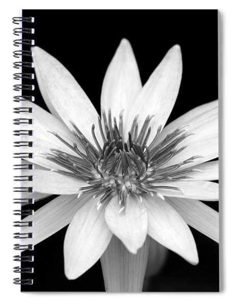 One Black And White Water Lily Spiral Notebook