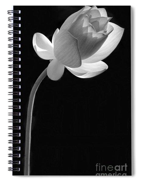 One Lotus Bud Spiral Notebook