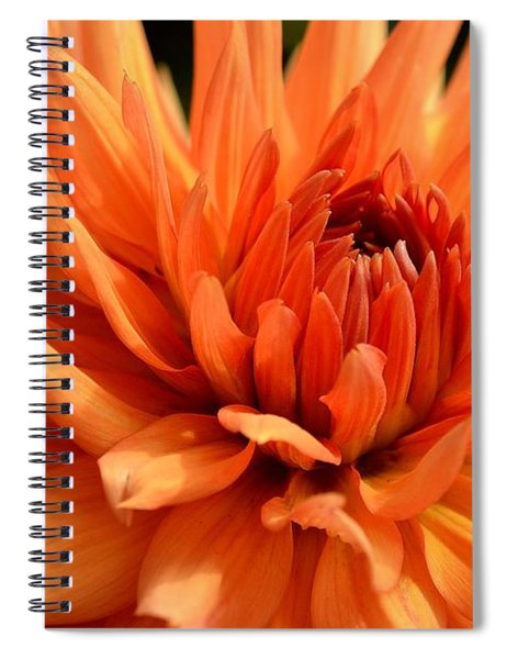 Spiral Notebook featuring the photograph Orange Dahlia by Scott Lyons