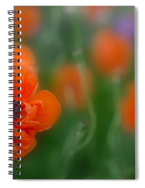 Orange Poppy Spiral Notebook