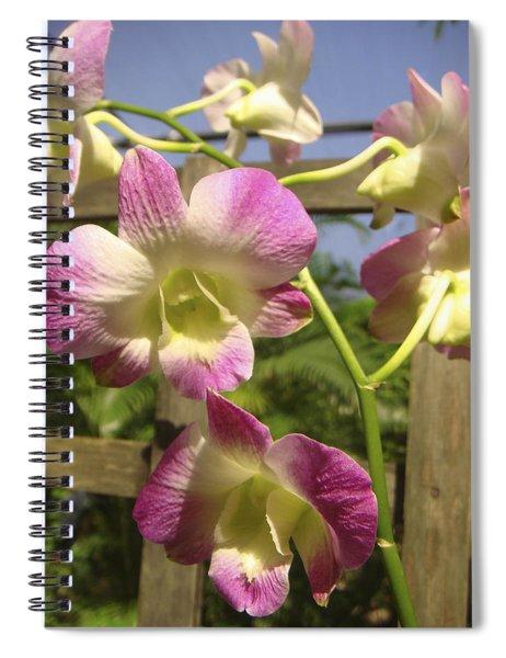 Orchid Splendor Spiral Notebook