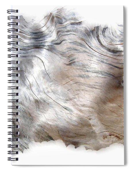 Oregon Driftwood Spiral Notebook