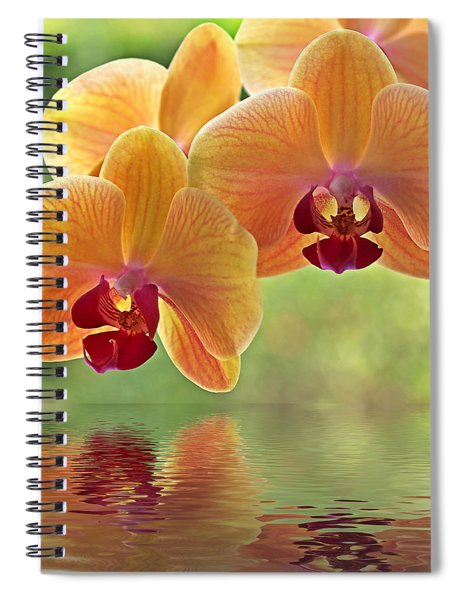 Oriental Spa - Square Spiral Notebook