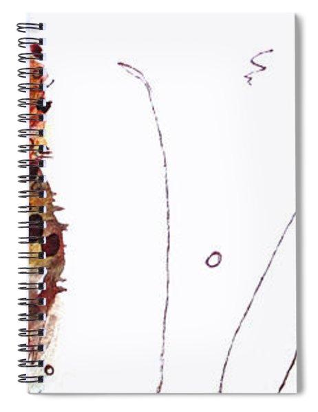 Oscar Spiral Notebook