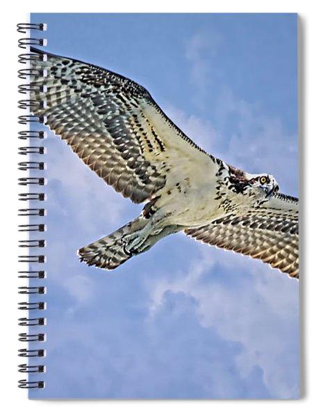 Osprey 91711 Spiral Notebook