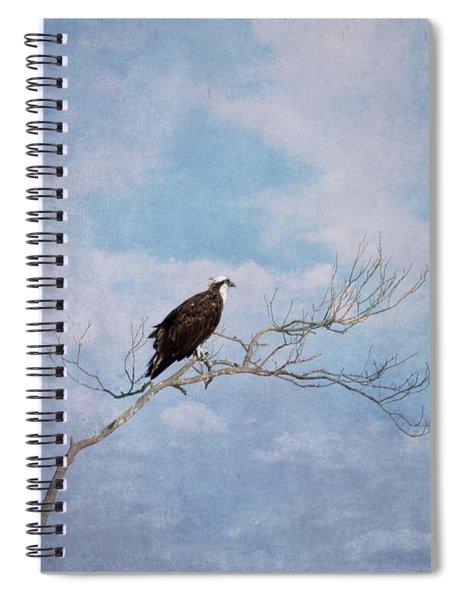 Osprey On Tree Branch Spiral Notebook