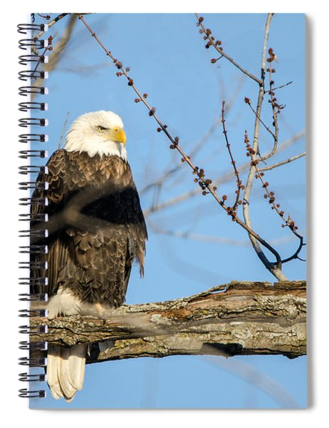 Overlooking Freedom Spiral Notebook