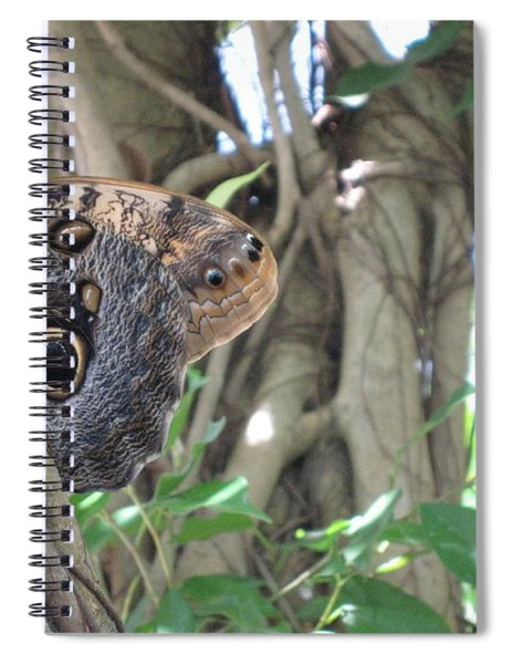 Owl Butterfly In Hiding Spiral Notebook