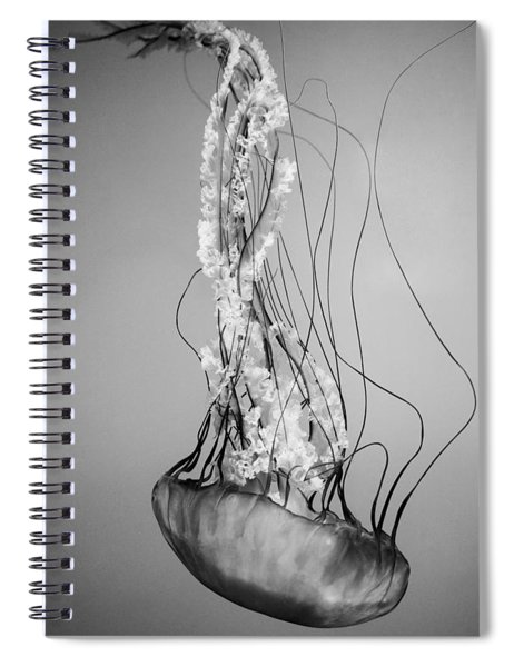 Pacific Sea Nettle - Black And White Spiral Notebook