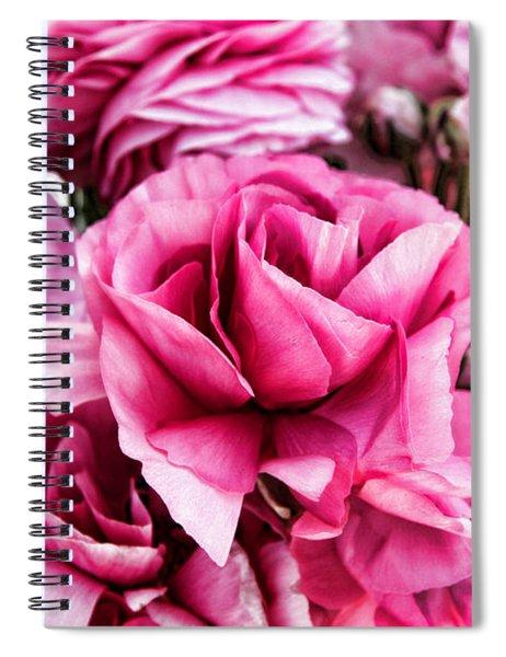 Paint Me Pink Ranunculus Flowers By Diana Sainz Spiral Notebook