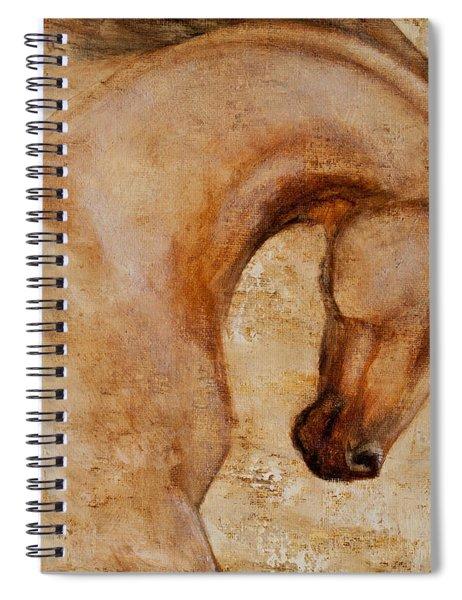 Painted Determination 1 Spiral Notebook
