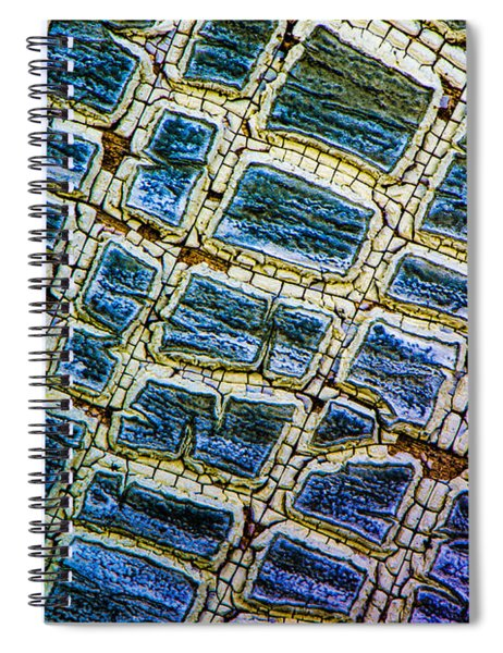 Painted Streets Number 1 Spiral Notebook