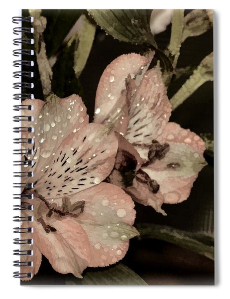 Pale Pink Lilies On Dark Background Spiral Notebook