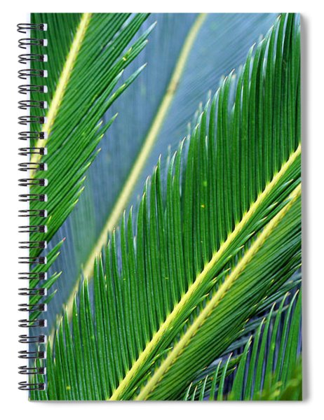 Palm Cycas Fronds Spiral Notebook