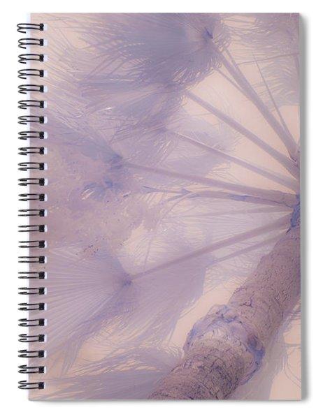 Palm Haze Spiral Notebook