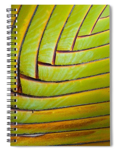 Palm Tree Leafs Spiral Notebook