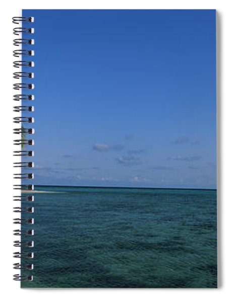 Palm Tree Overhanging On The Beach Spiral Notebook