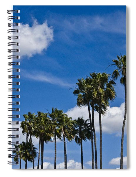 Palm Trees In San Diego California No. 1661 Spiral Notebook