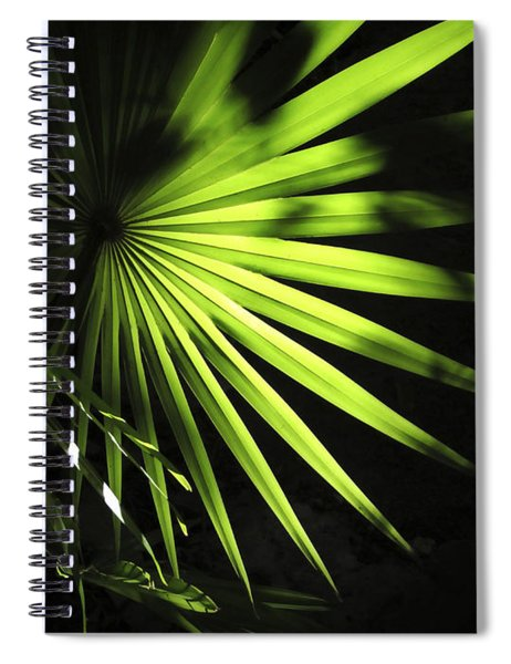 Palmetto And Rays Spiral Notebook