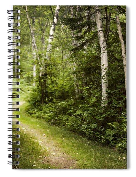 Path In Birch Forest Spiral Notebook