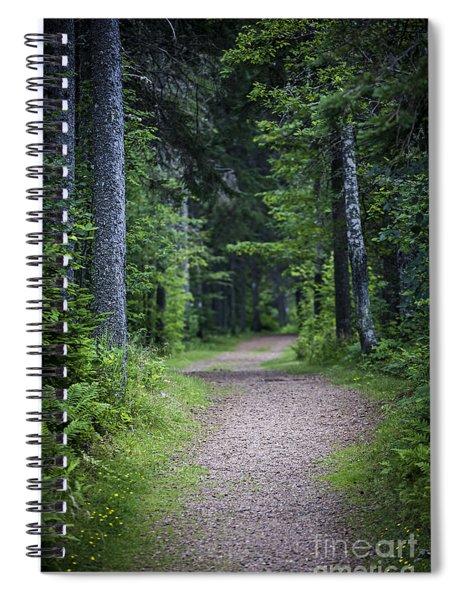 Path In Dark Forest Spiral Notebook
