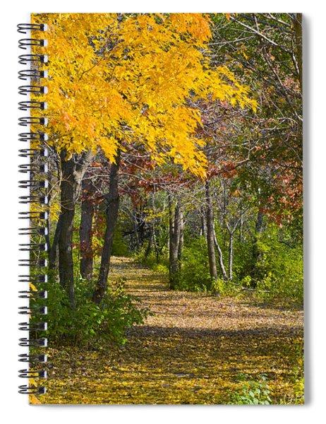 Path Through Autumn Trees Spiral Notebook