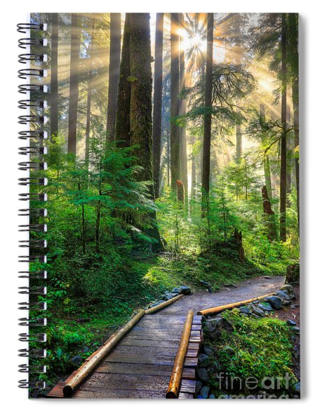 Spiral Notebook featuring the photograph Pathway Into The Light by Inge Johnsson
