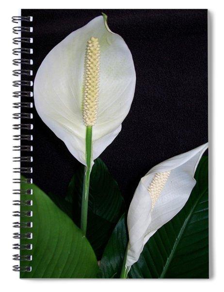 Peace Lilies Spiral Notebook