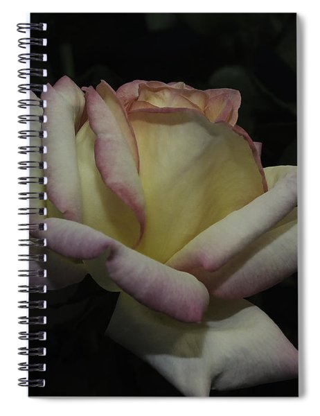 Peace To You And Yours Spiral Notebook