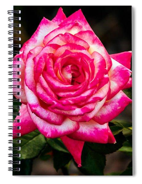 Peaceful Rose Spiral Notebook