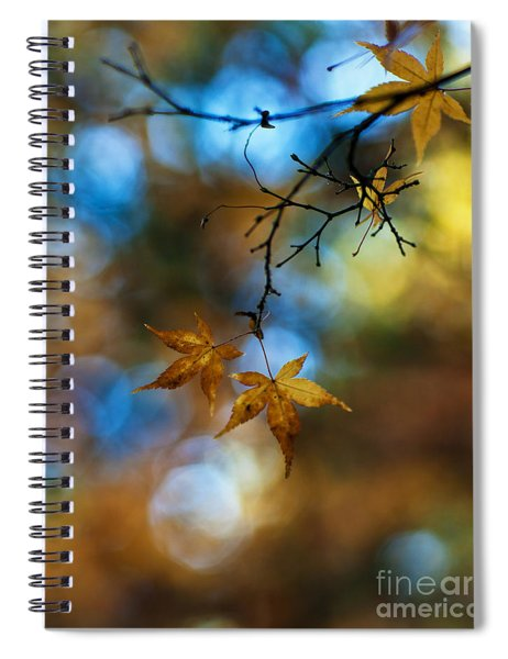 Pearlescent Acers Spiral Notebook